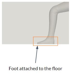 Manikin Foot Image